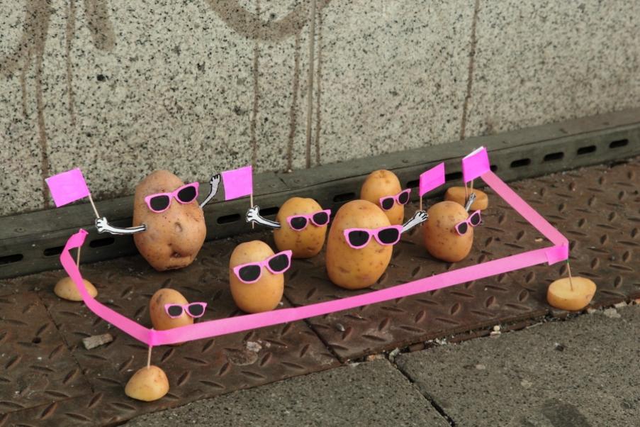 可爱的小土豆 1